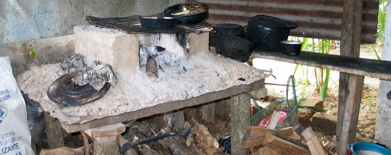 the ecological stoves reduce the consumption of wood by half